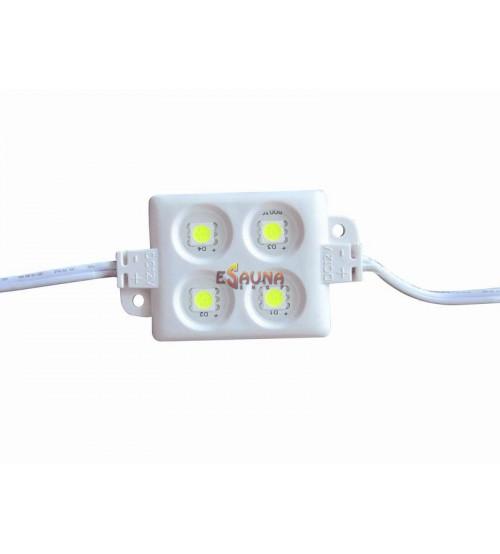 LED modulis LM5002W