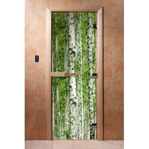 Stiklinės pirties durys su foto plėvele A084