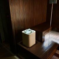 Proyecto de sauna individual en Vilnius