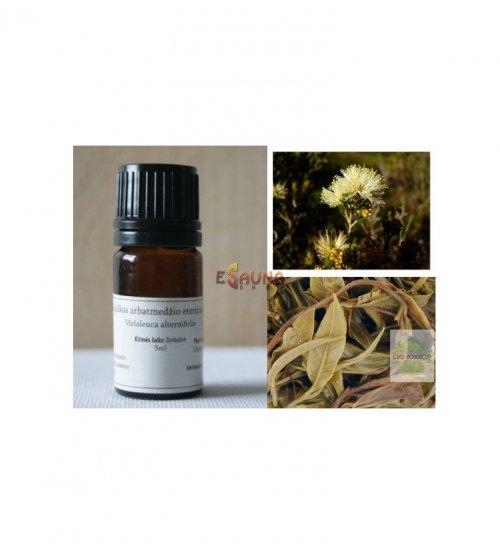 Bio-Tee-Baum-wesentliches Öl