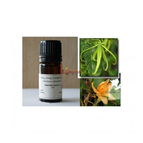Ylang ylang (complete)-wesentliches Öl