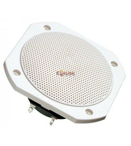 Speaker sauna FRS 10 WP