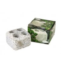 Πέτρα με ατμό