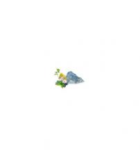 Sentiotec saunos kvapų koncentratas, Alpių žolelės