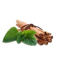 Aroma concentrato di sauna Sentiotec, menta piperita alla cannella