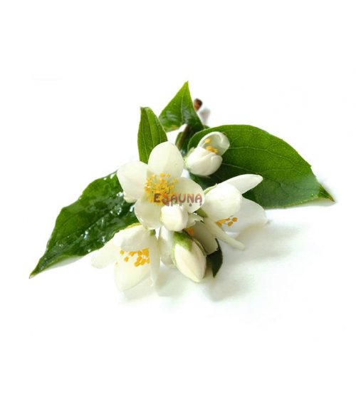 Sentiotec Koncentrat aromatyczny do sauny, kwiat jaśminu