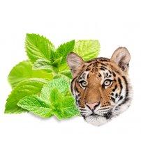Aroma concentrato di sauna Sentiotec, menta di tigre