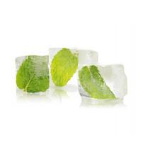 Sentiotec сауна ароматический концентрат, ледяная мята