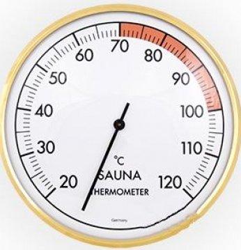 Termometras ..