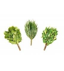 3 nyírfa szauna habverő